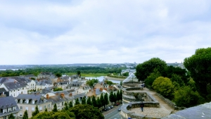 Chateau Angers view