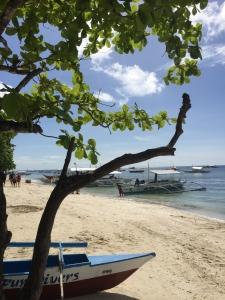 stranden Bohol Filipijnen