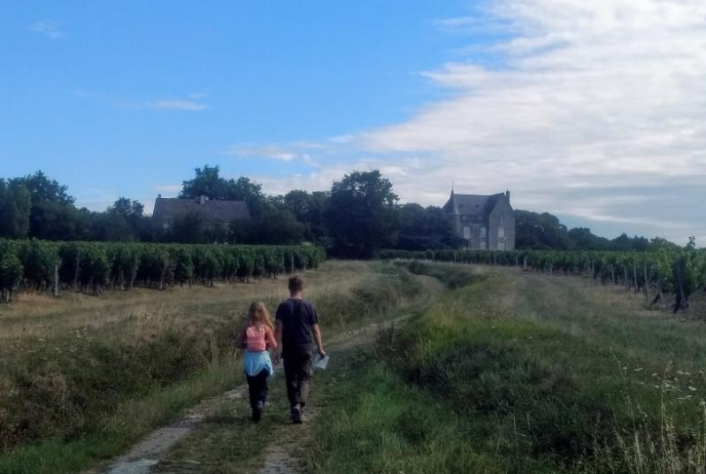 Loire wijngaarden en kasteel wandeling