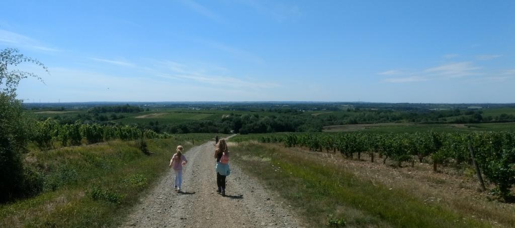 Wandeling Loire gebied