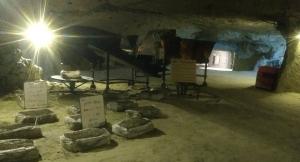 Grotwoning en paddestoelen museum