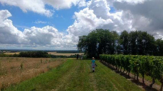 Seuilly wandel landschap
