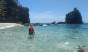zwemmen het Apo eiland