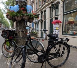Amsterdam Met Kids
