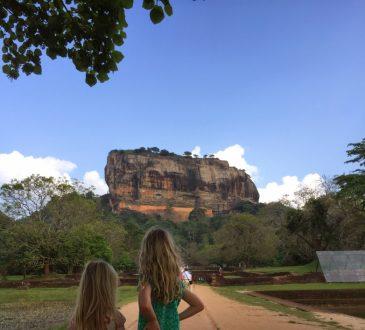 Leeuwenrots Sri Lanka Kassapa met kinderen