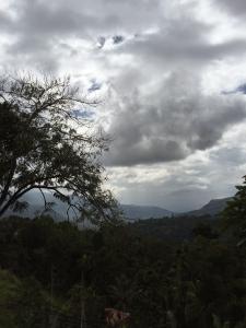 Dingen om te doen in Nuwara Eliya Sri Lanka