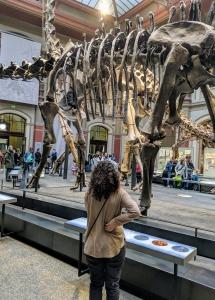 T-Rex Berlin
