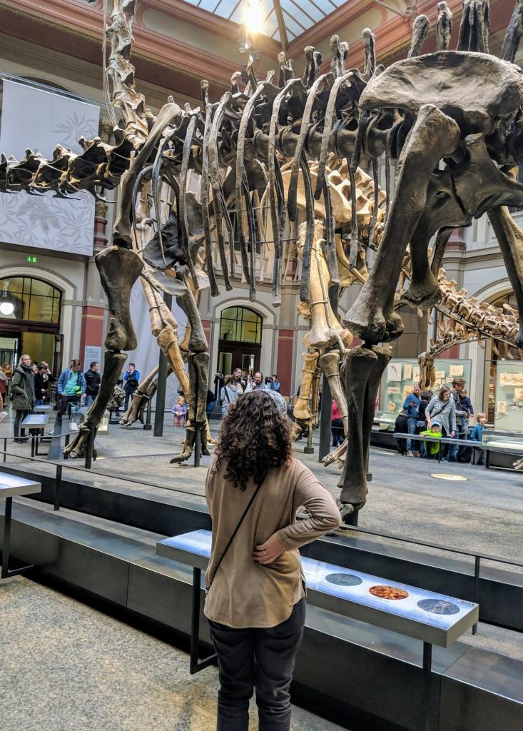 Museum natuur Berlijn