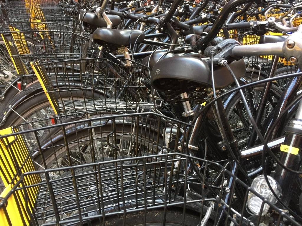 gids voor de fietstocht door Berlijn