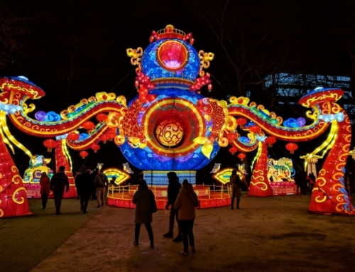 Lichtfestival Antwerpen-China Light Zoo