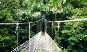 Hangende brug Arenal