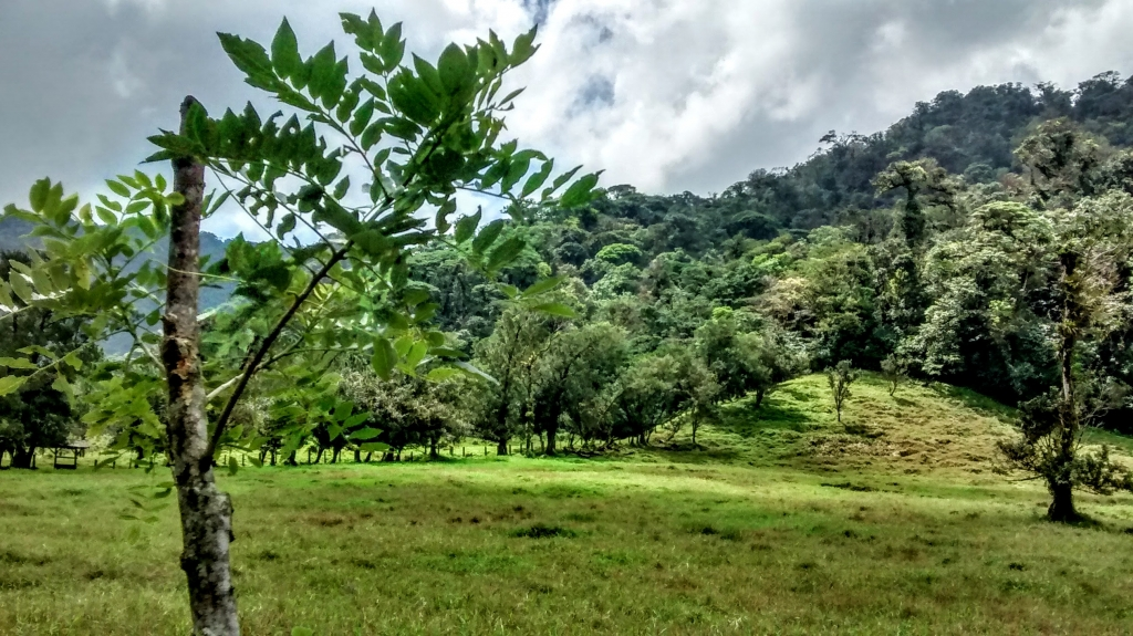 Costa Rica's Arenal