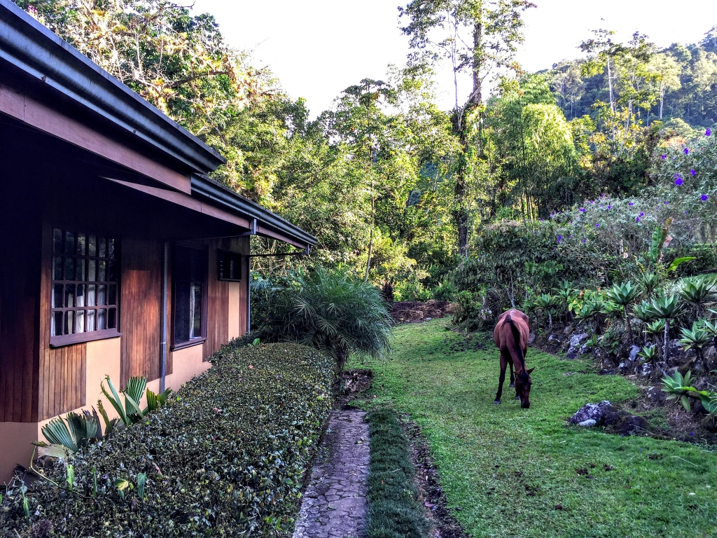 Beste familiehotels Costa Rica