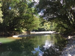 Pejibaye rivier