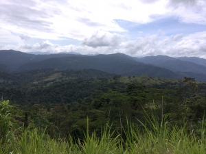 Area Turrialba