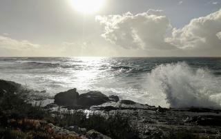 Fisherman's trail wave