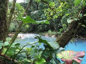 Rio Celeste blue water