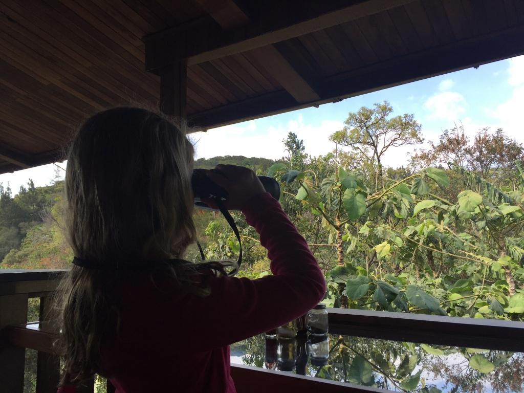 beste nationale parken van Monteverde