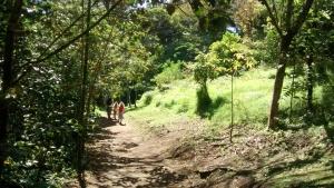 Curicancha reserve