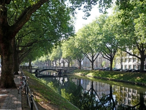 Voorkomende redenen om Düsseldorf te bezoeken