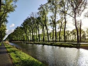 Fietsen Rondom Brugge