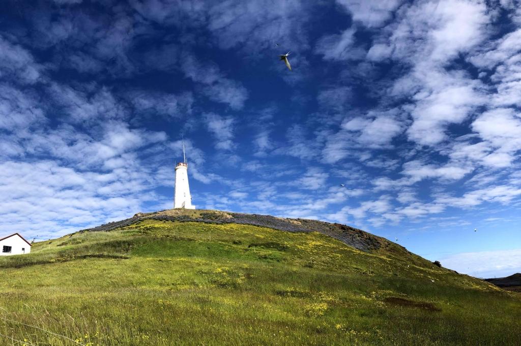 Vuurtoren Reykjanes