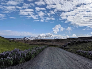 Weg Reykjanes naar vuurtoren