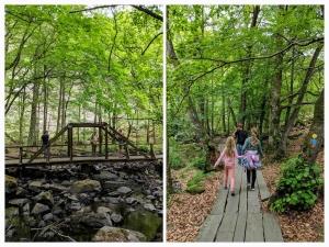 Söderåsen natuurpark