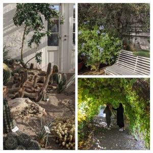 Botanical garden Oslo