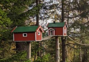 Birdhouse Norway