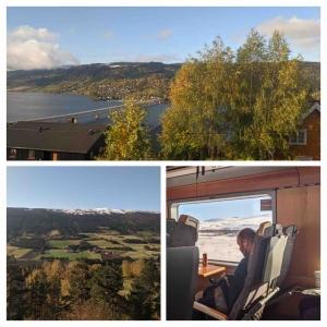 Trein in Noorwegen