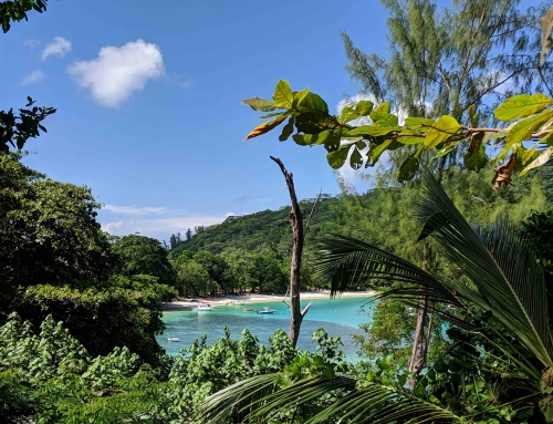 Magisch Mahé Seychellen| Highlights en informatie
