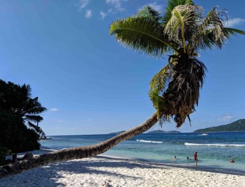 Seychellen vakantie?| Gratis reisgids