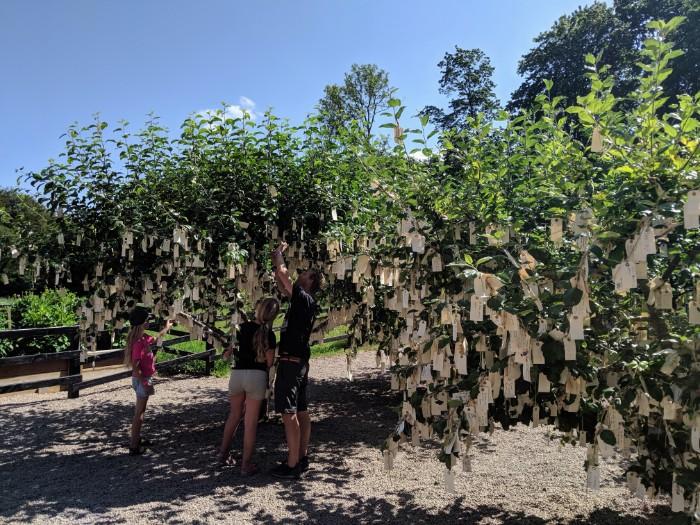 Yoko Ono Wish tree