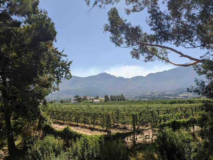 Wineries South Africa