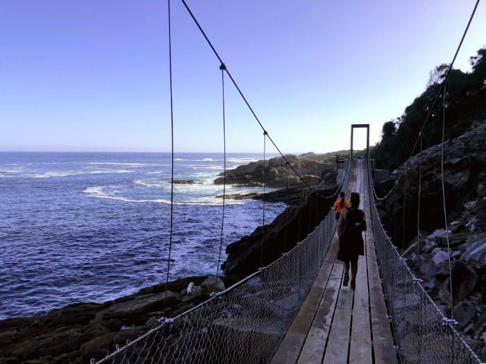 Suspension bridge South Africa