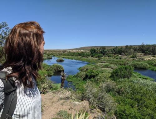 Bontebok National Park| Zuid-Afrika met kinderen