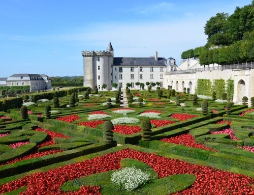 De mooiste kastelen van de Loire in Frankrijk