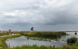 Marker Wadden Flevoland