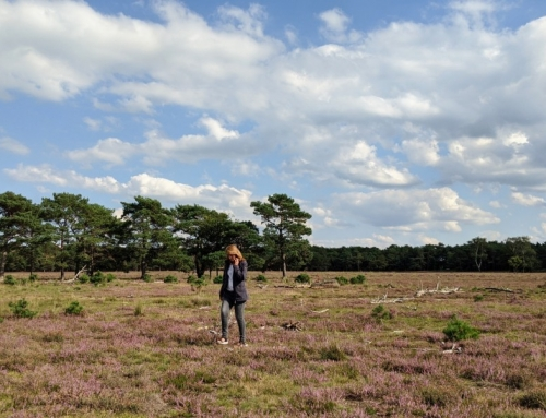 Fjällräven review| Travellers jas