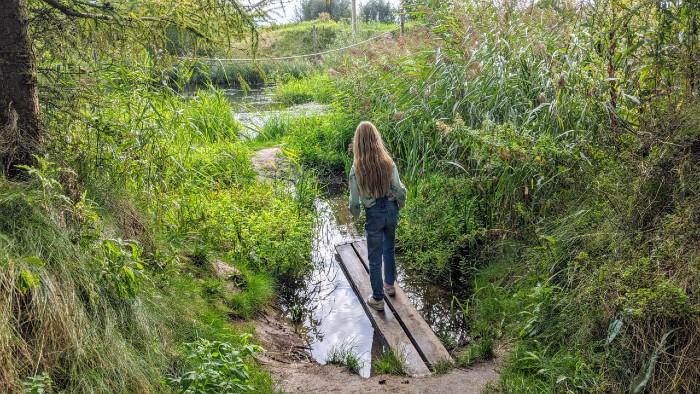 Natuur Flevoland