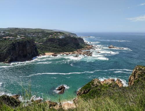 Natuur in Knysna| Tuinroute Zuid-Afrika