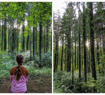 Vakantie in de natuur Luxemburg