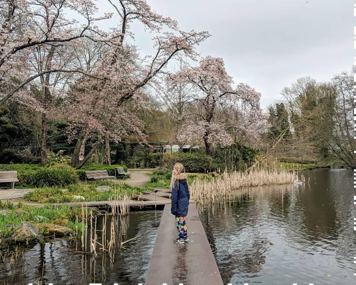 Japanse Tuin Amstelpark