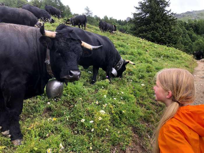 Vakantie Zwitserland met kinderen